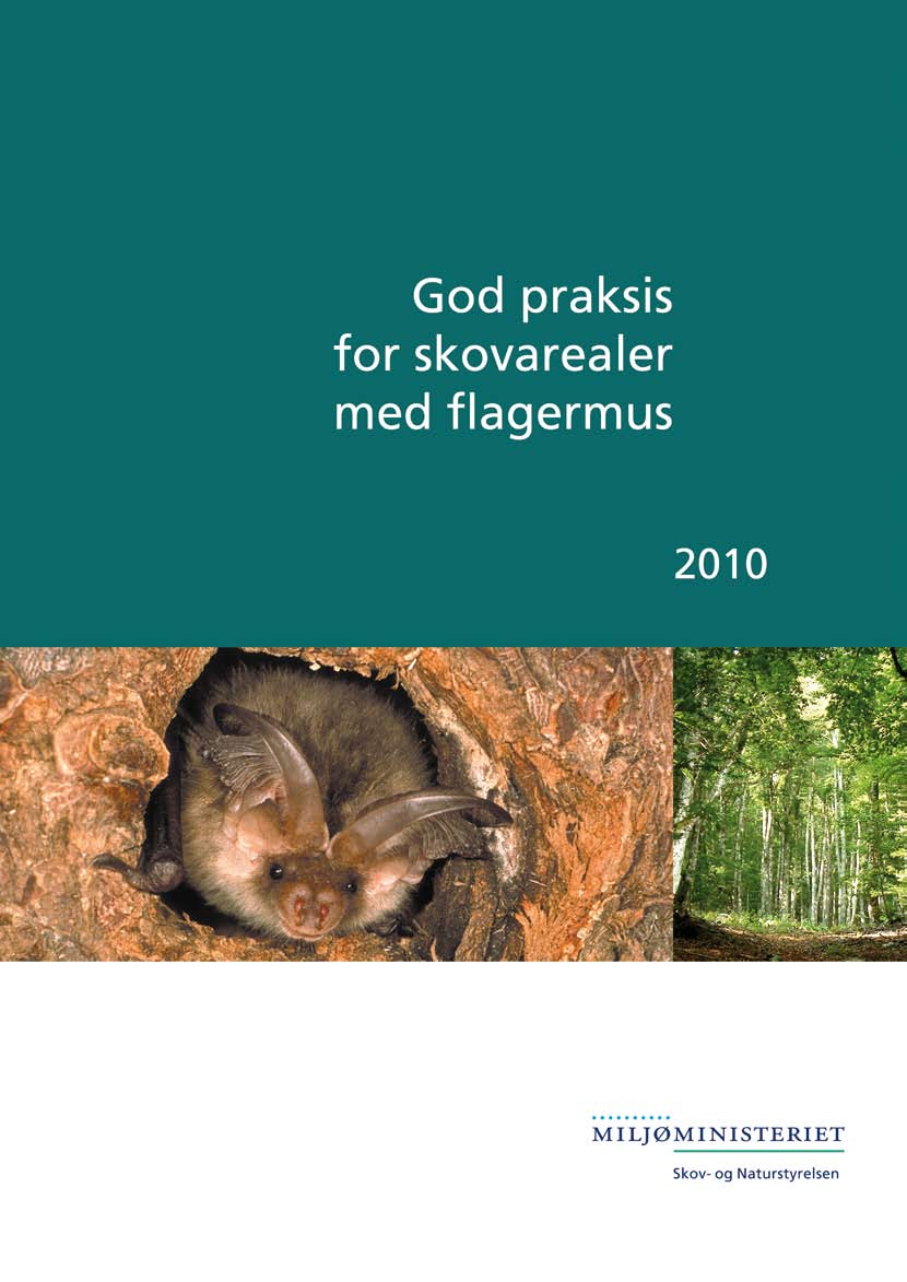God praksis for skovarealer med flagermus