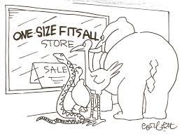 Modellens forcer: One size does not fit all!