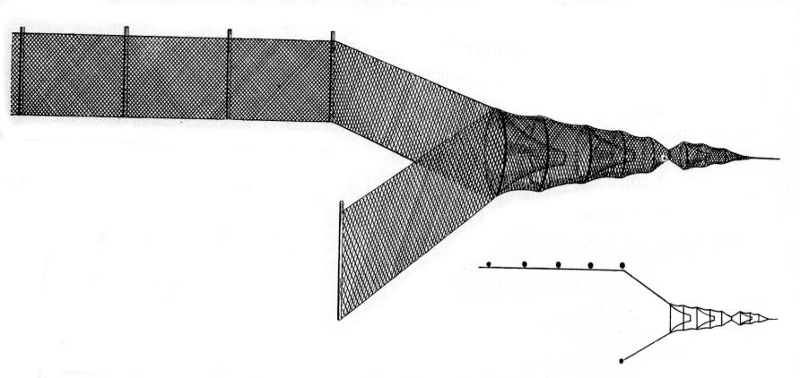 APPENDIX Figure 11. Typical pile fixed fyke net C) Fyke nets: Fyke nets are used throughout Denmark, along the coastline, in fjords, in streams and in lakes.