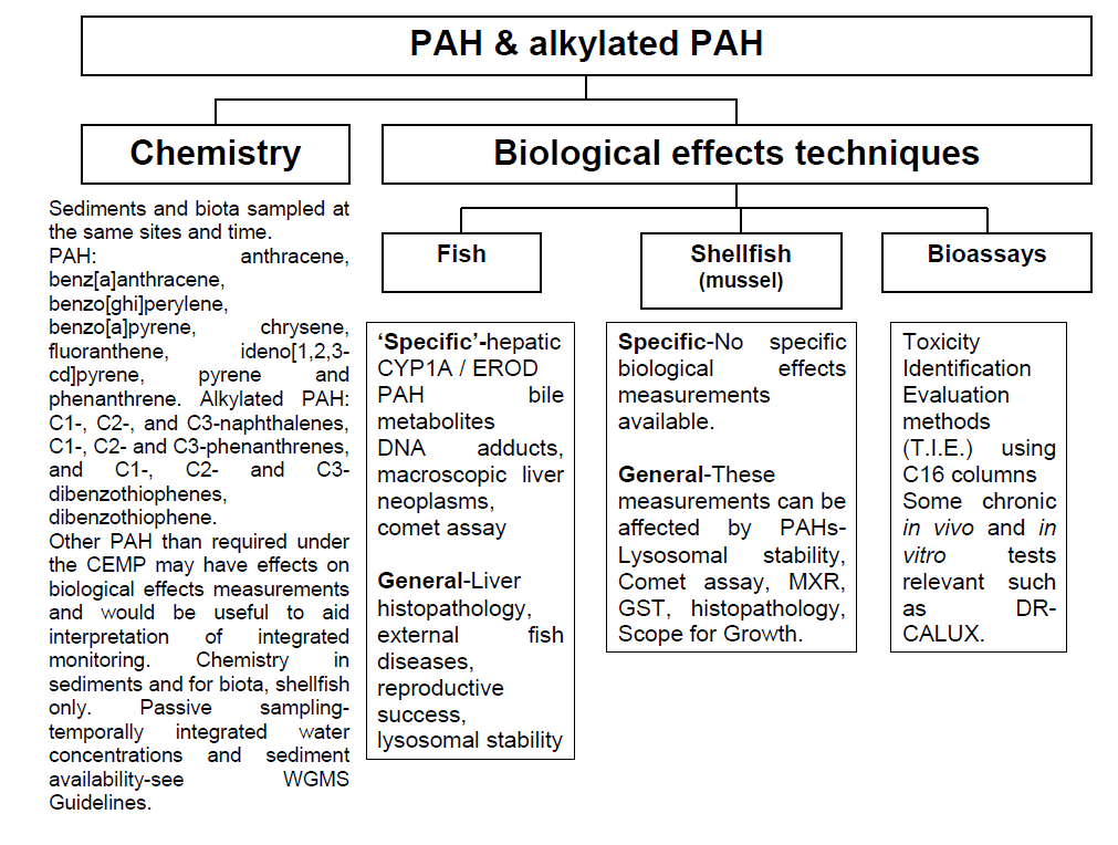 Scheme for Integrated Monitoring of PAHs and their Effects in