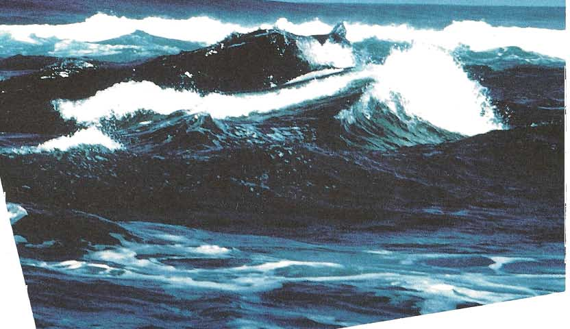 and Seas Wave