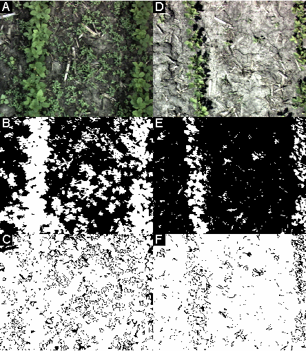 Figure 5-6: Examples of segmentation of soybean images using nonlinear thresholding in NDI/intensity space. A-C: Image under cloudy conditions. D-F: Image under sunlight. A,D: raw images.