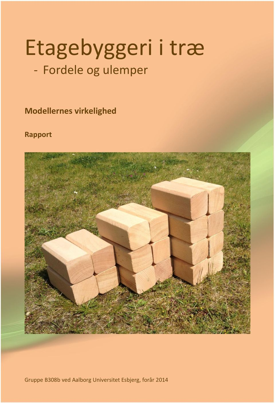 Rapport Gruppe B308b ved