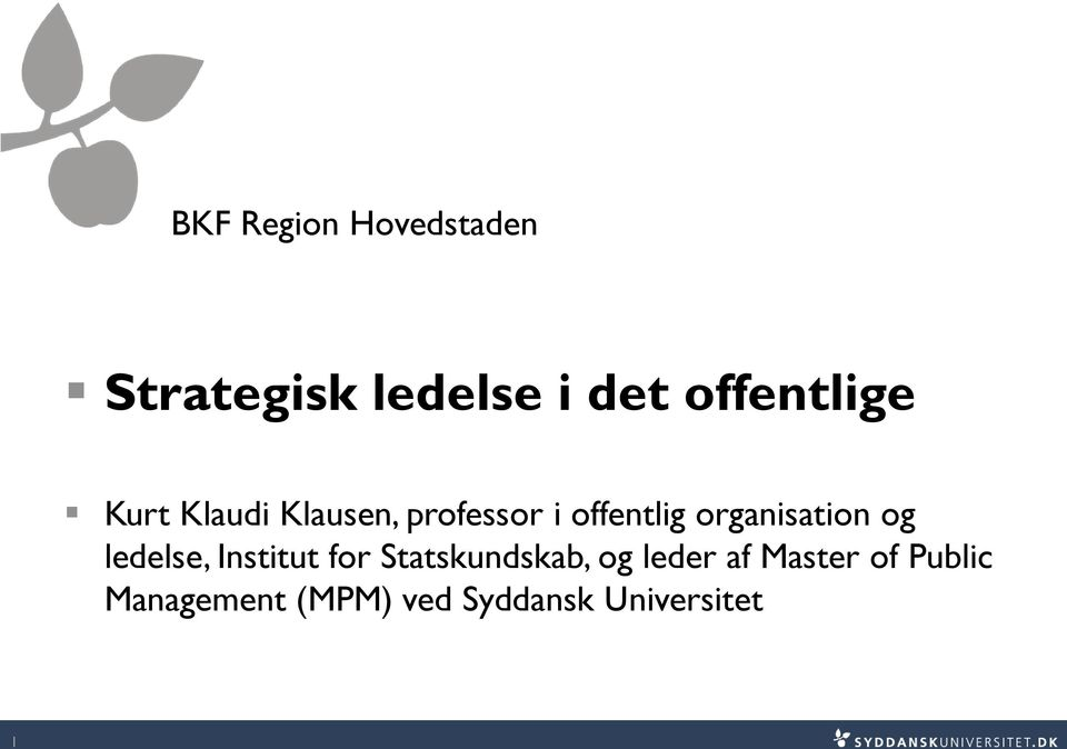 organisation og ledelse, Institut for Statskundskab, og