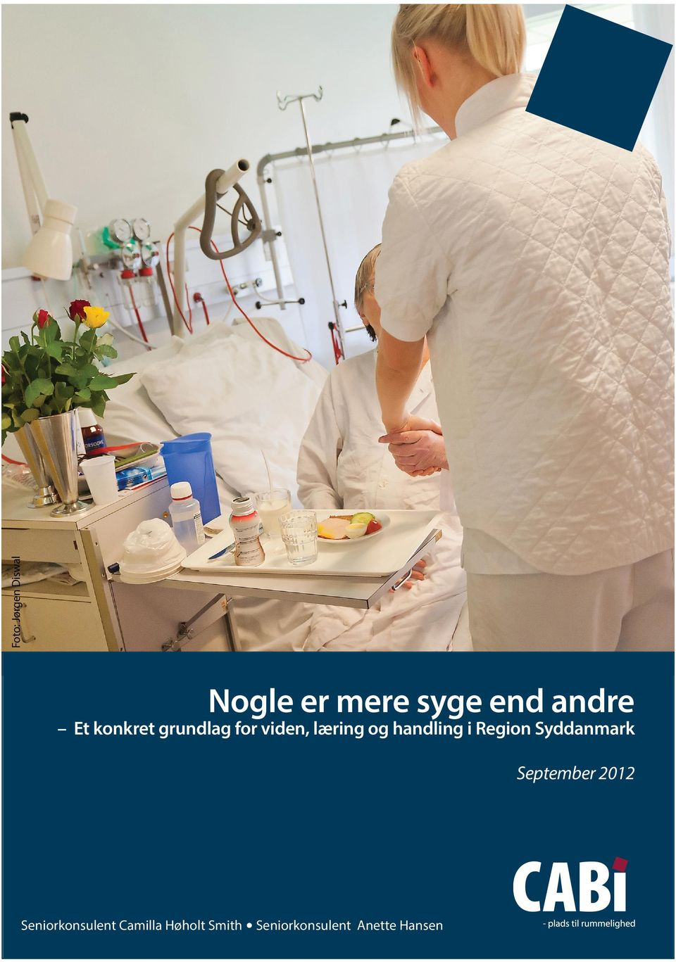 i Region Syddanmark September 2012