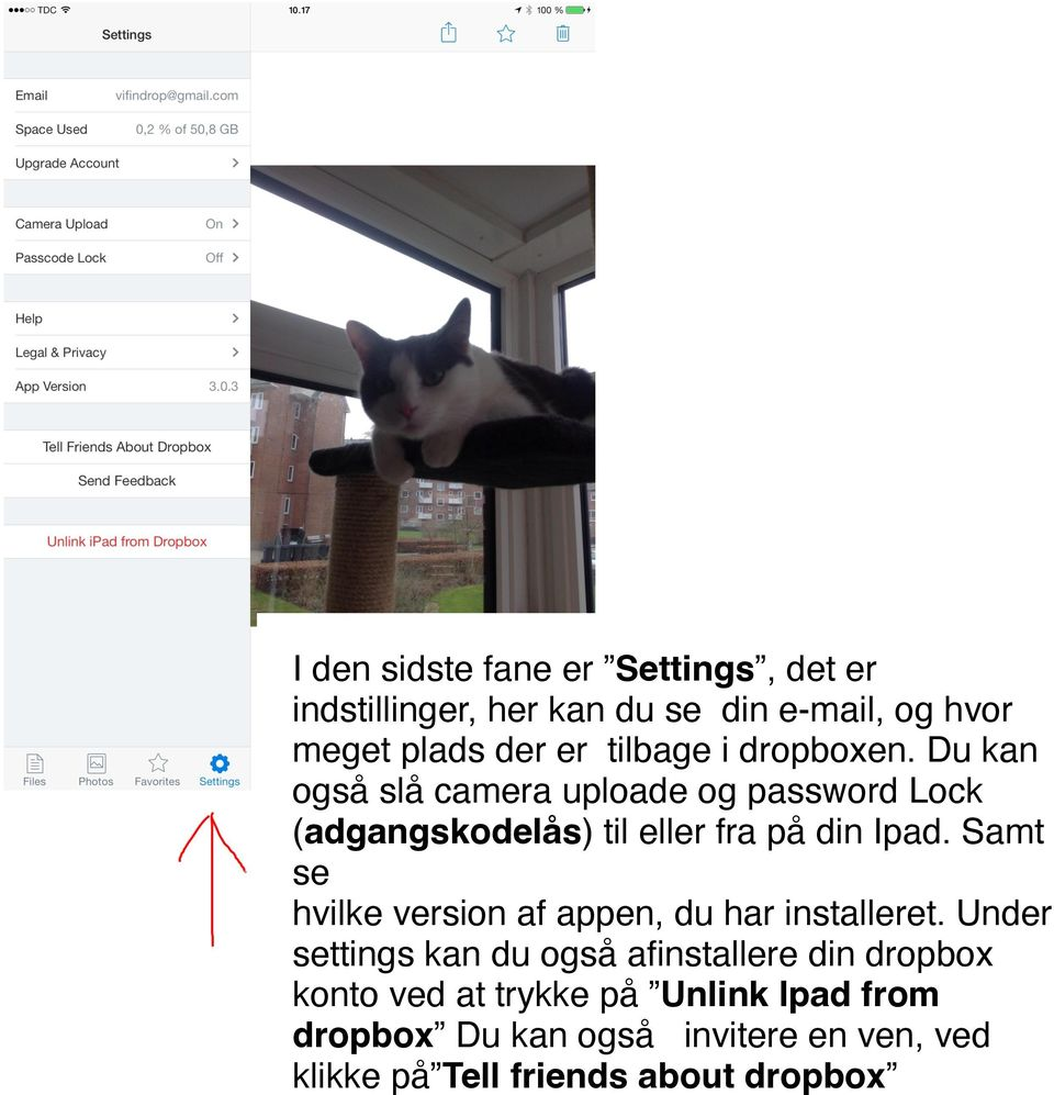 Du kan også slå camera uploade og password Lock (adgangskodelås) til eller fra på din Ipad.