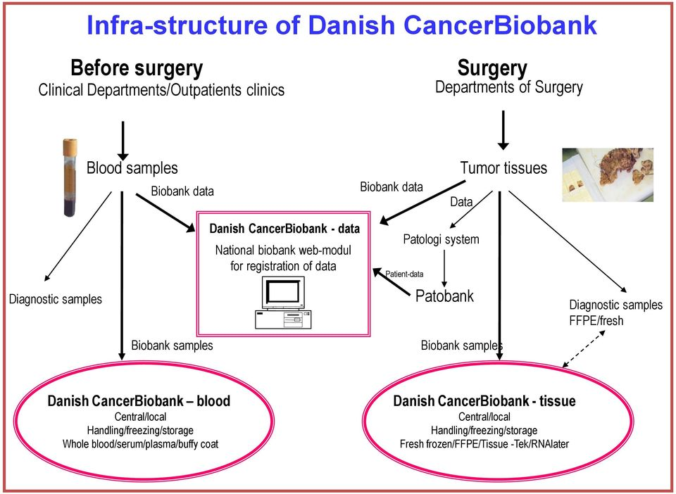 data Patologi system Patient-data Patobank Biobank samples Diagnostic samples FFPE/fresh Danish CancerBiobank blood Central/local