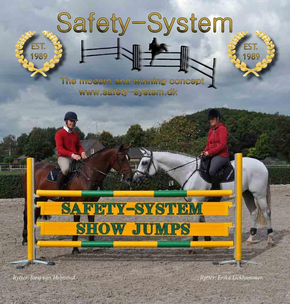concept www.safety-system.