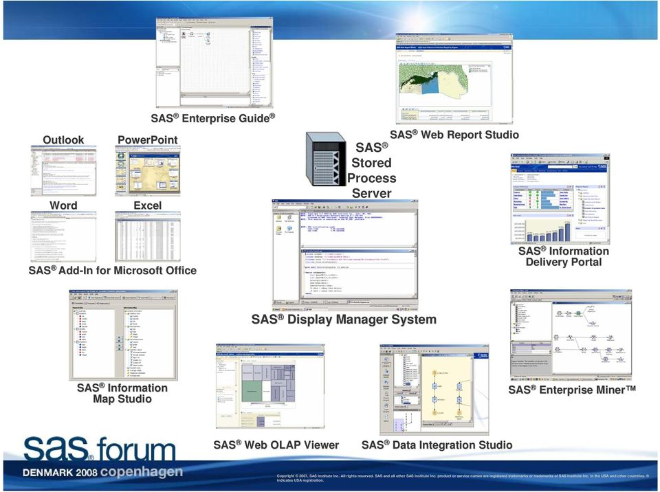 Information Delivery Portal SAS Display Manager System SAS Information