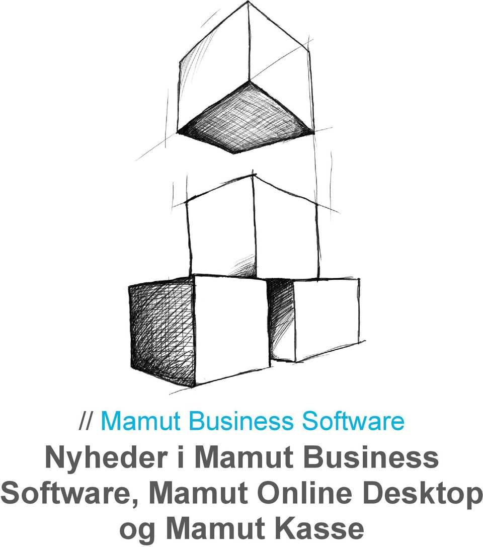 Business Software, Mamut