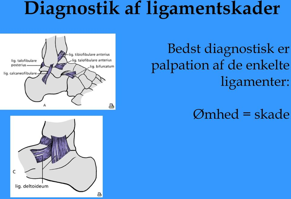 diagnostisk er palpation
