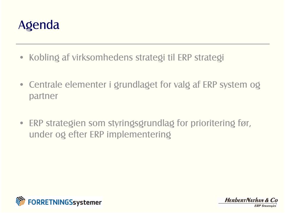 ERP system og partner ERP strategien som