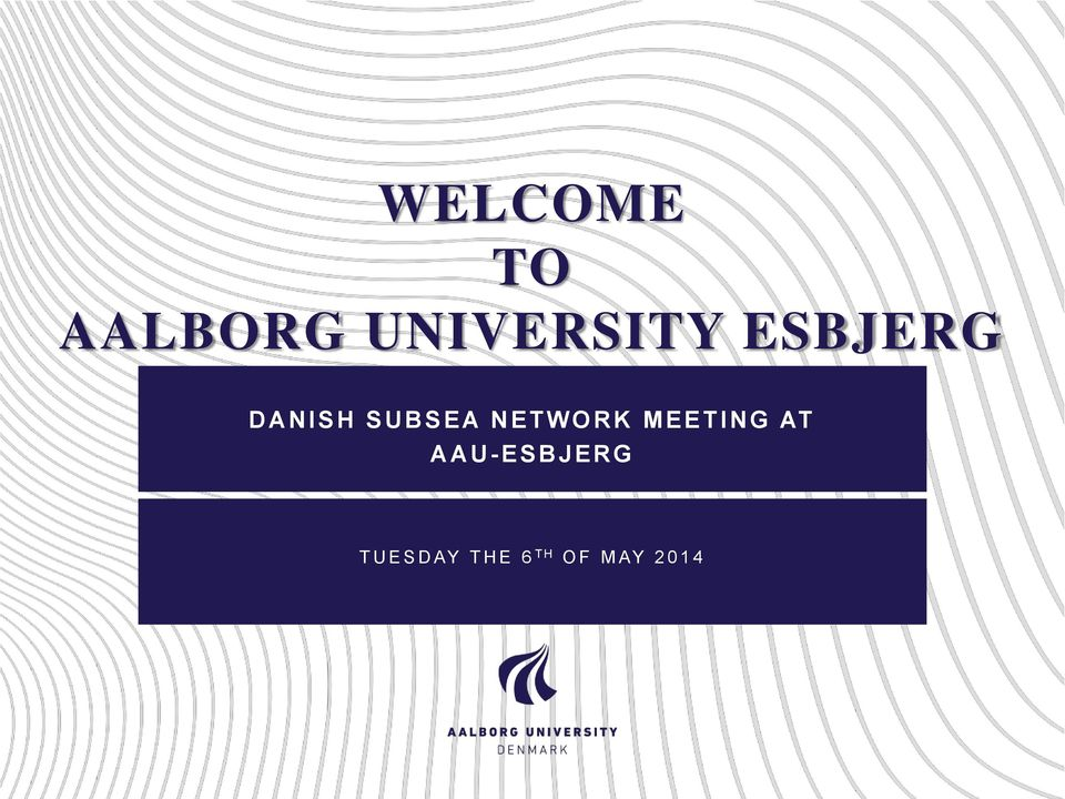 MEETING AT AAU-ESBJERG T U E S