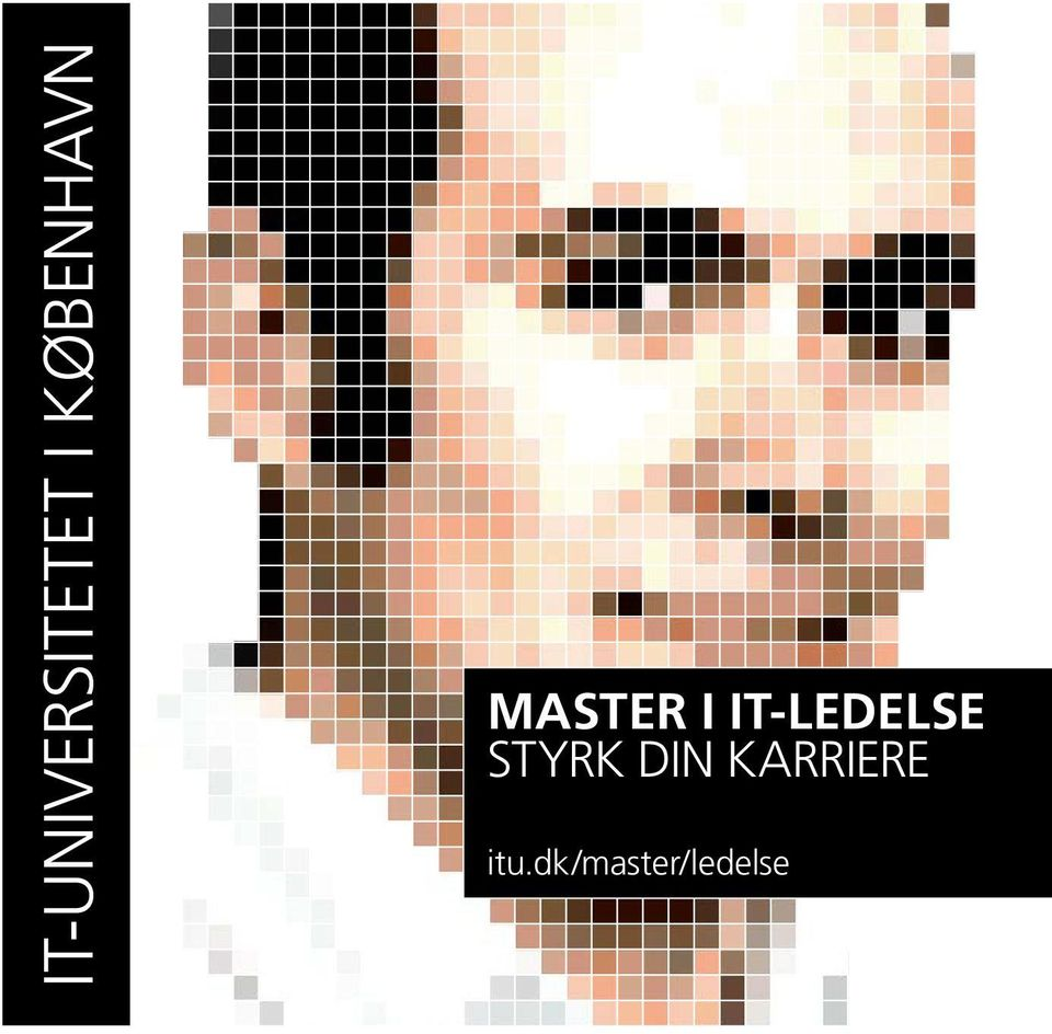 IT-LEDELSE STYRK DIN
