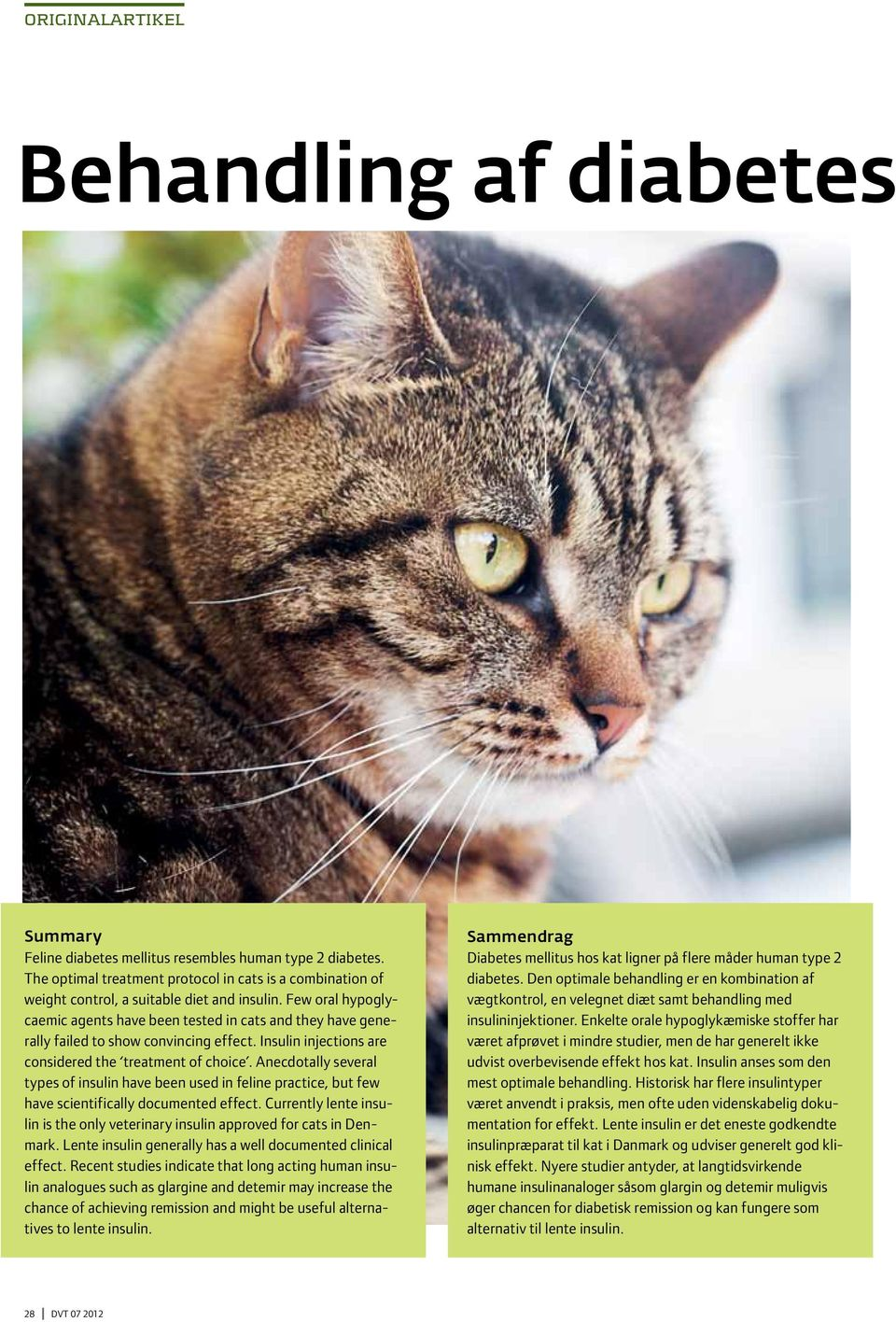 Few oral hypoglycaemic agents have been tested in cats and they have generally failed to show convincing effect. Insulin injections are considered the treatment of choice.