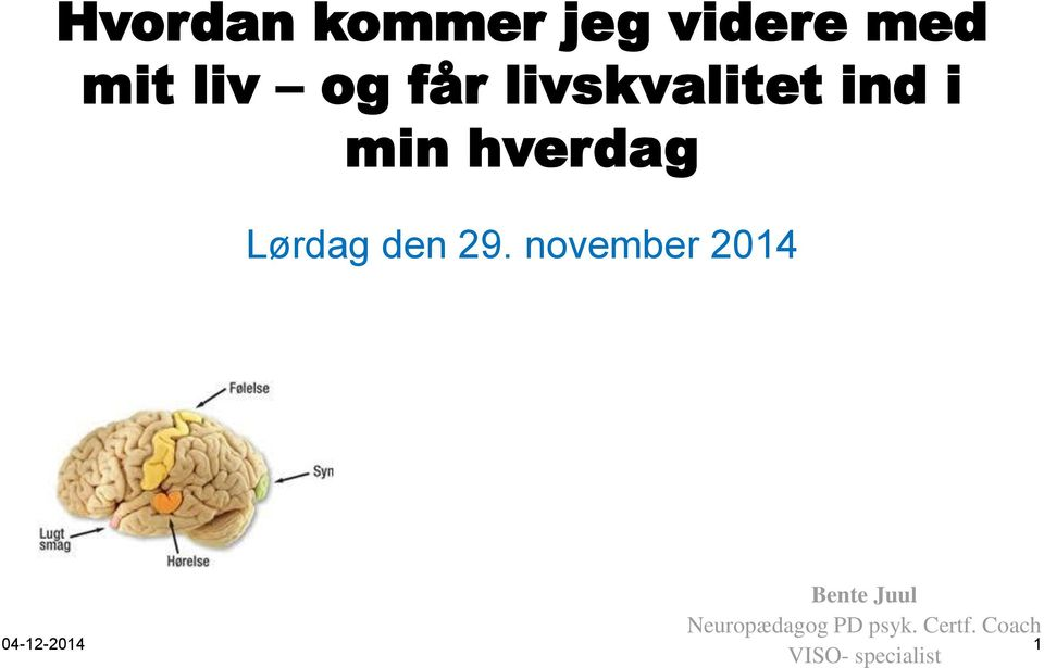 november 2014 Bente Juul Neuropædagog PD