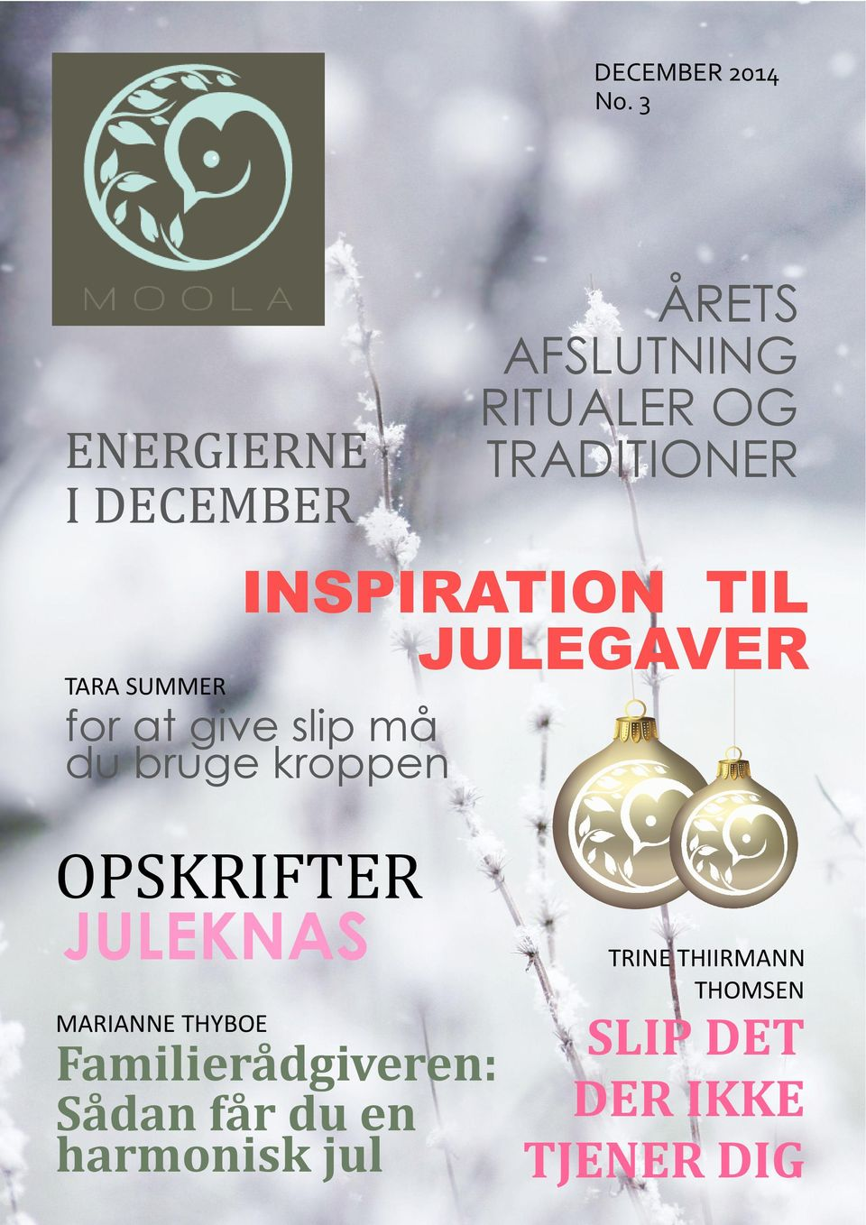 INSPIRATION TIL JULEGAVER TARA SUMMER for at give slip må du bruge
