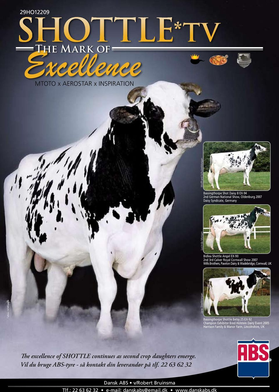 Shottle Betsy 25 EX-92 Champion Exhibitor Bred Holstein Dairy Event 2005 Harrison Family & Manor Farm, Lincolnshire, UK The excellence of SHOTTLE continues as second crop daughters