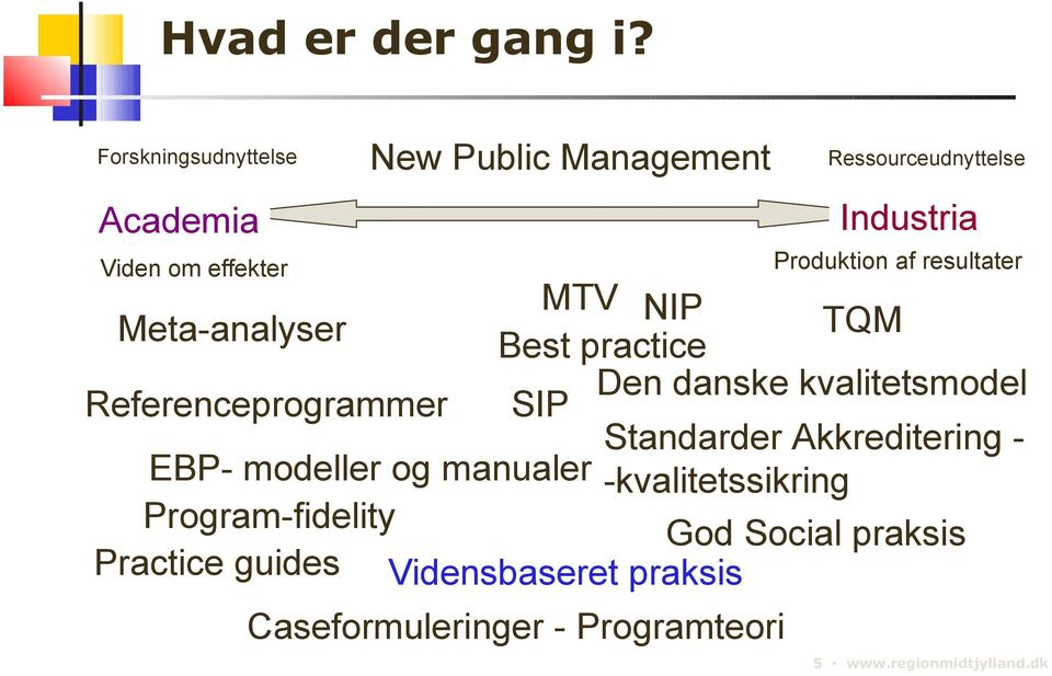 modeller og manualer Program-fidelity Practice guides Ressourceudnyttelse Industria MTV NIP TQM Best practice