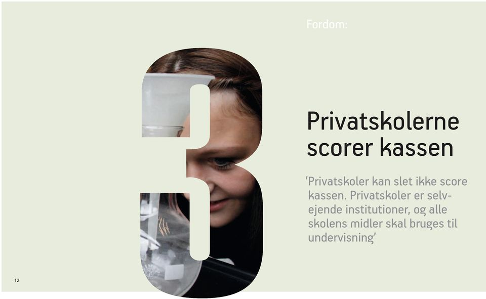 Privatskoler er selvejende institutioner,