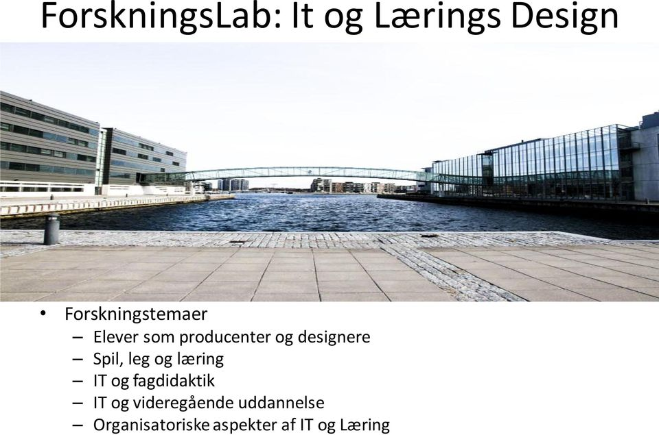 designere Spil, leg og læring IT og fagdidaktik IT og