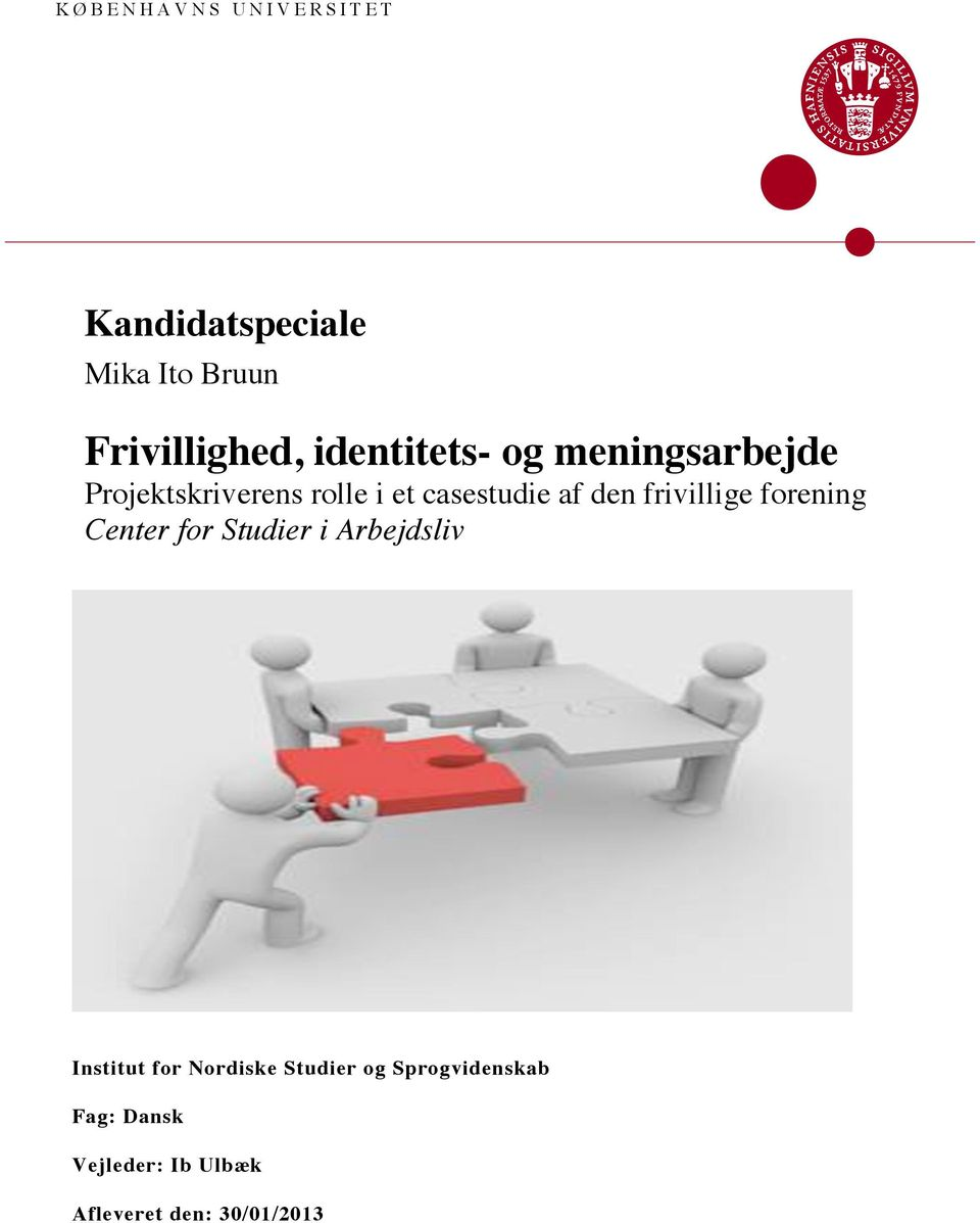 den frivillige forening Center for Studier i Arbejdsliv Institut for
