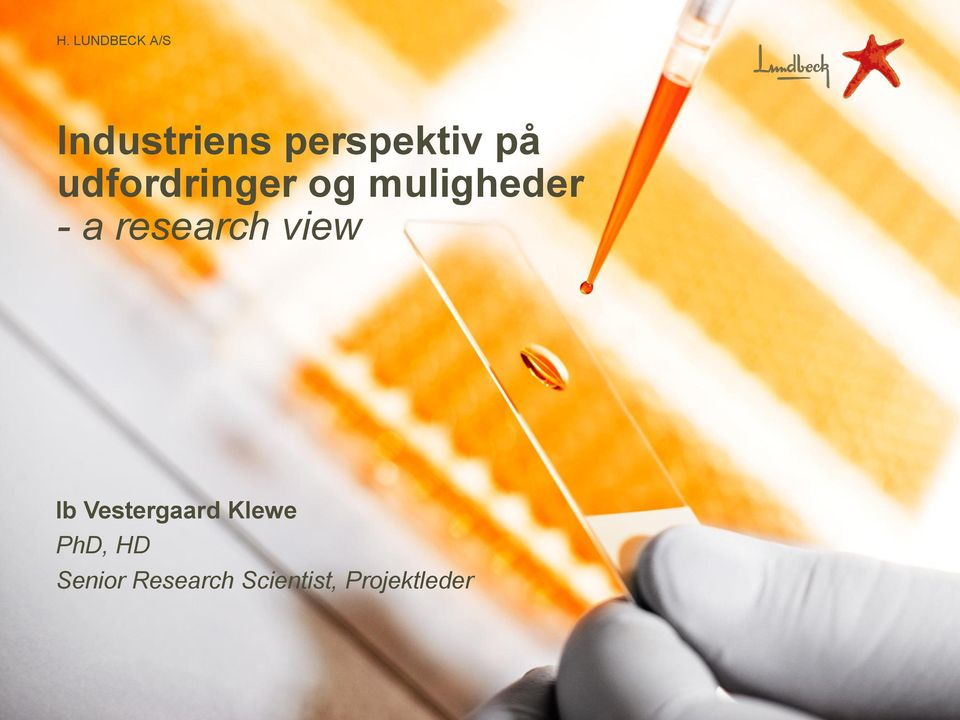 research view Ib Vestergaard Klewe
