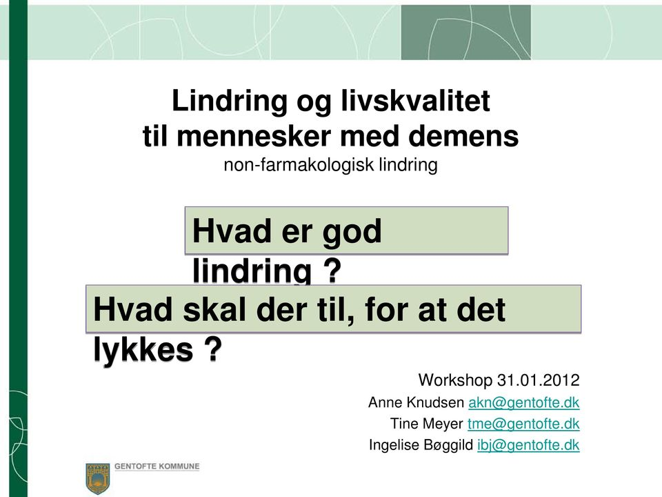 Hvad skal der til, for at det lykkes? Workshop 31.01.