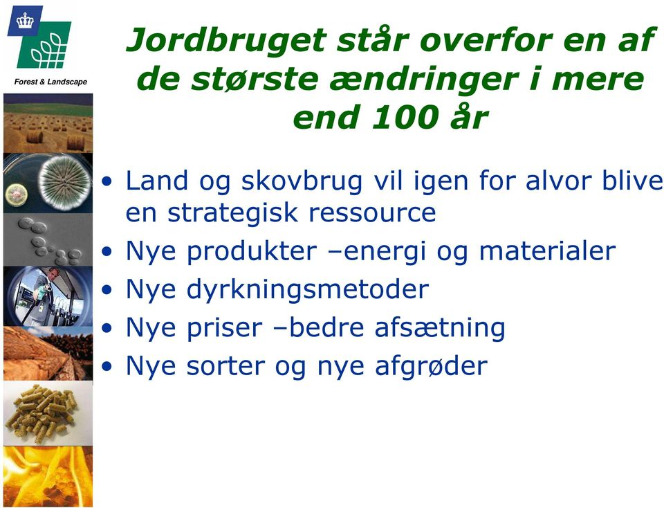 strategisk ressource Nye produkter energi og materialer Nye