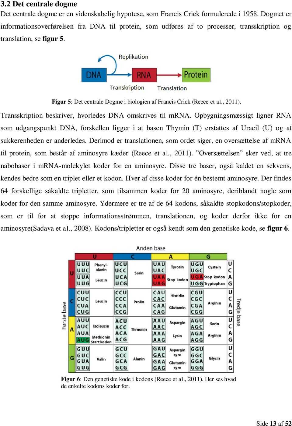 , 2011). Transskription beskriver, hvorledes DNA omskrives til mrna.