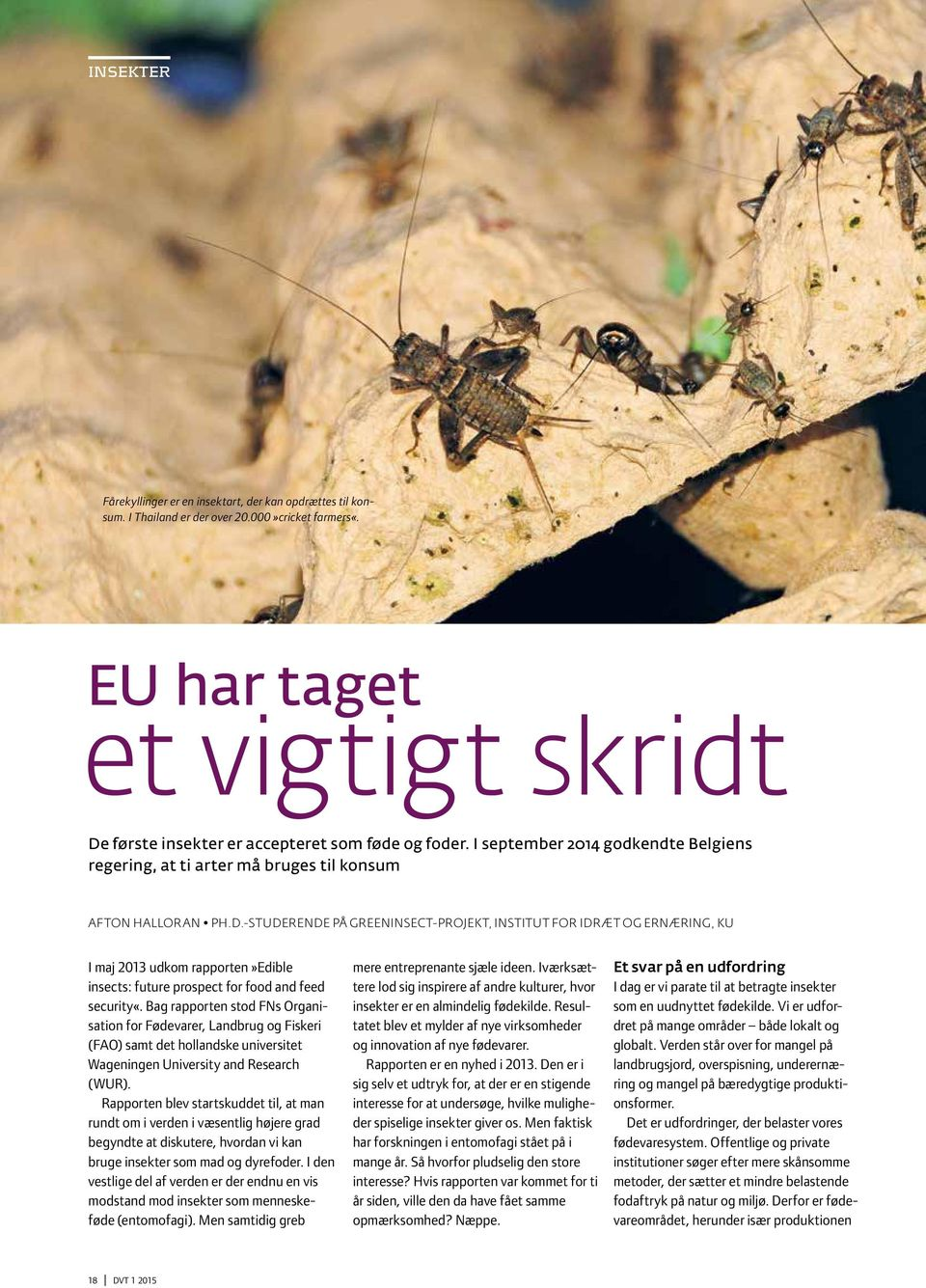 -STUDERENDE PÅ GREENINSECT-PROJEKT, INSTITUT FOR IDRÆT OG ERNÆRING, KU I maj 2013 udkom rapporten»edible insects: future prospect for food and feed security«.