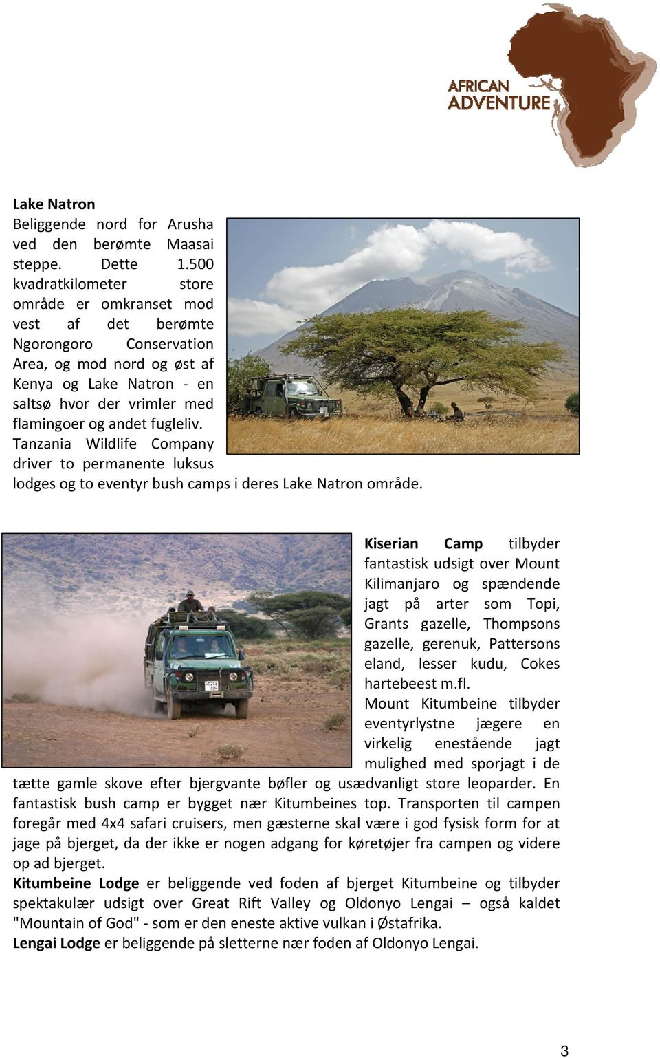 fugleliv. Tanzania Wildlife Company driver to permanente luksus lodges og to eventyr bush camps i deres Lake Natron område.