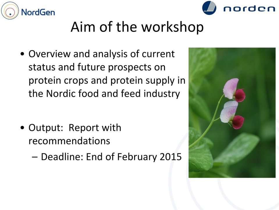 protein supply in the Nordic food and feed industry