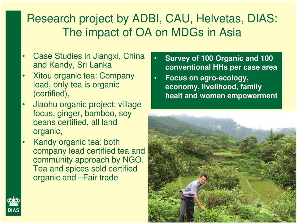 land organic, Kandy organic tea: both company lead certified tea and community approach by NGO.