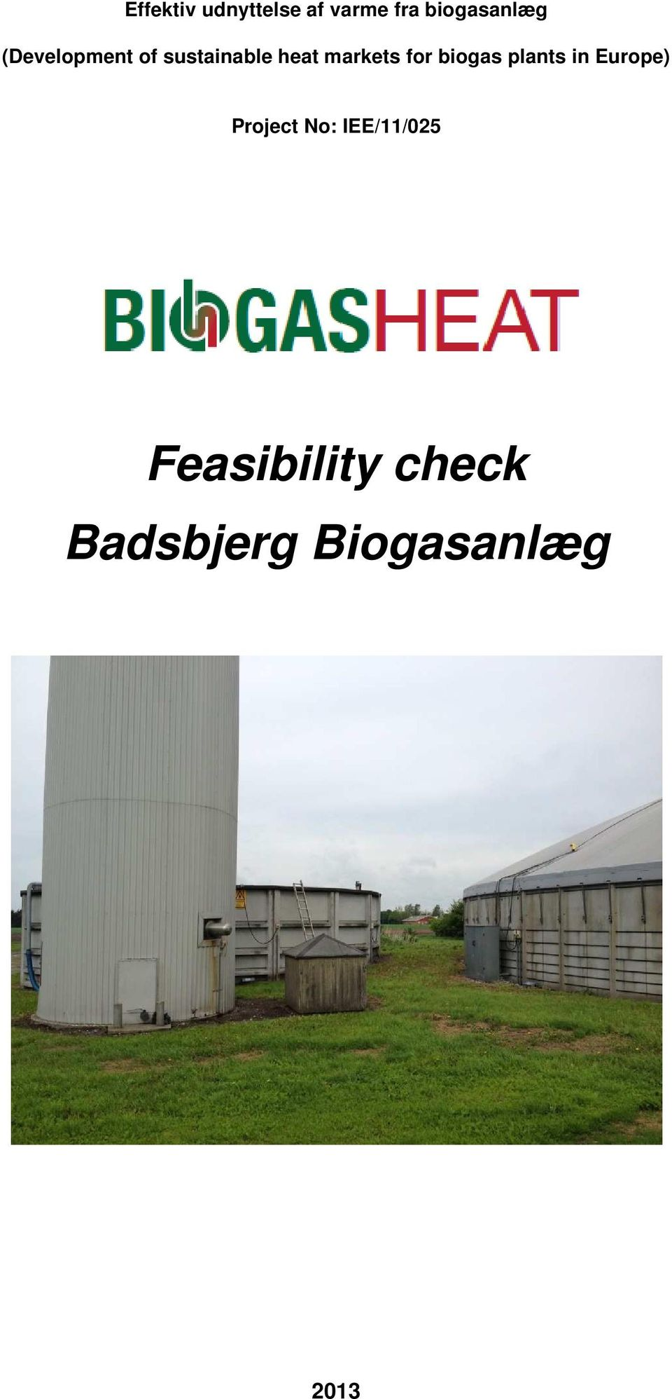 heat markets for biogas plants in