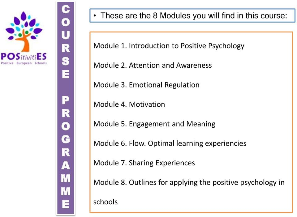 Emotional Regulation Module 4. Motivation Module 5. Engagement and Meaning Module 6. Flow.