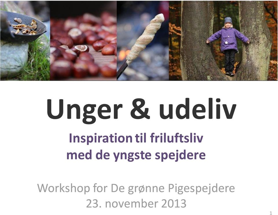spejdere Workshop for De