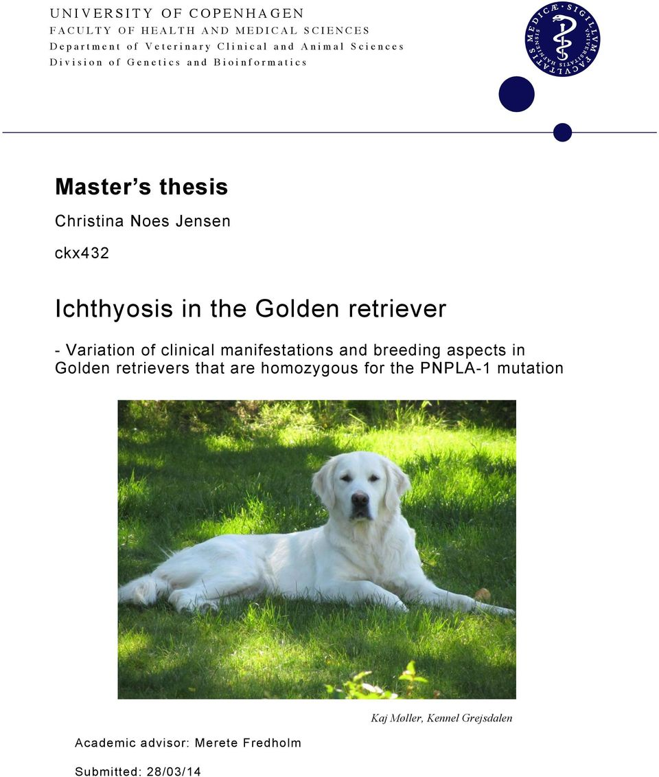 Golden retriever - Variation of clinical manifestations and breeding aspects in Golden retrievers that are