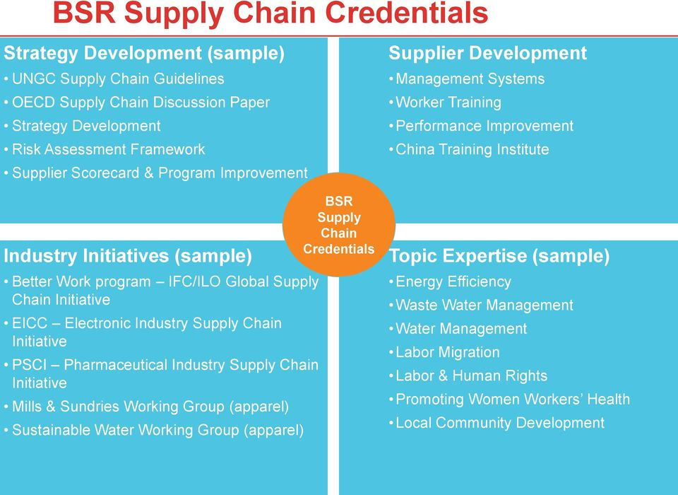 Initiative EICC Electronic Industry Supply Chain Initiative PSCI Pharmaceutical Industry Supply Chain Initiative Mills & Sundries Working Group (apparel) Sustainable Water Working Group (apparel) BSR