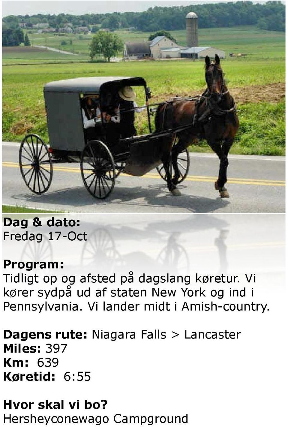 Vi lander midt i Amish-country.