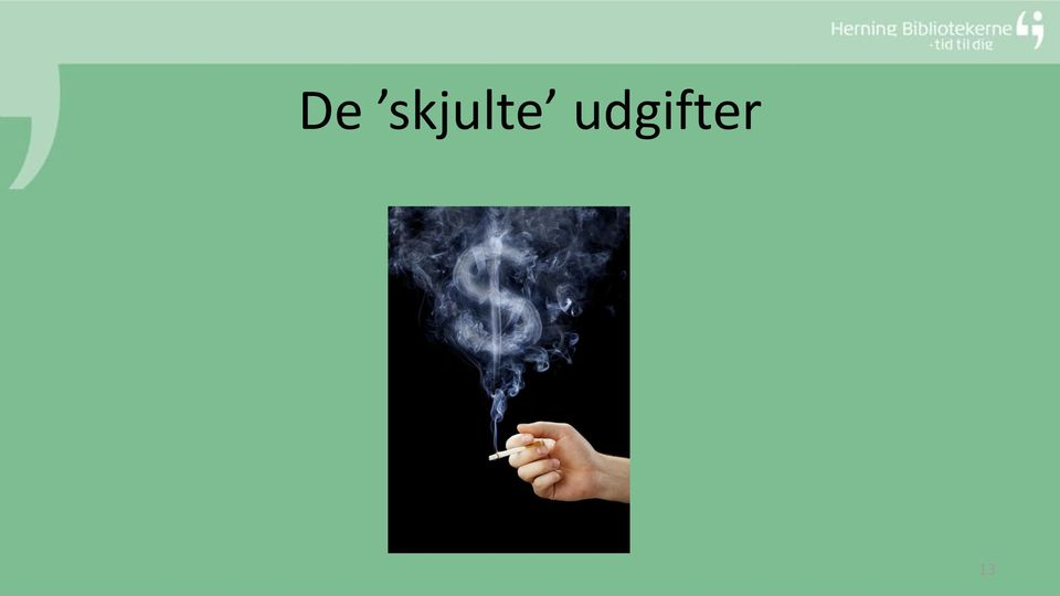 udgifter