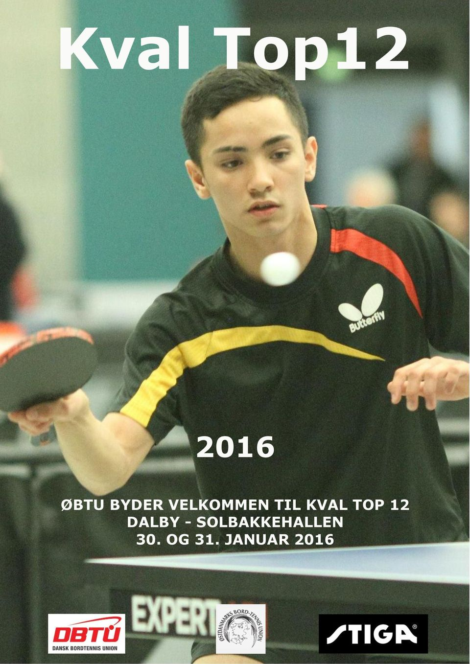 TOP 12 DALBY -