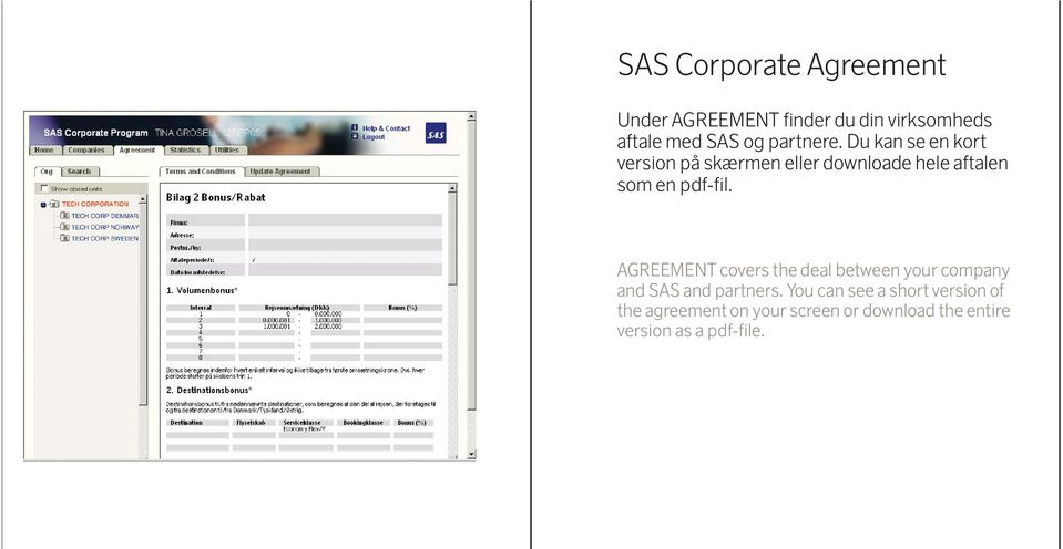 AGREEMENT covers the deal between your company and SAS and partners.