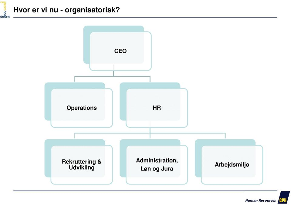 CEO Operations HR