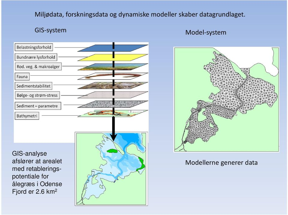 GIS-system Model-system GIS-analyse afslører at