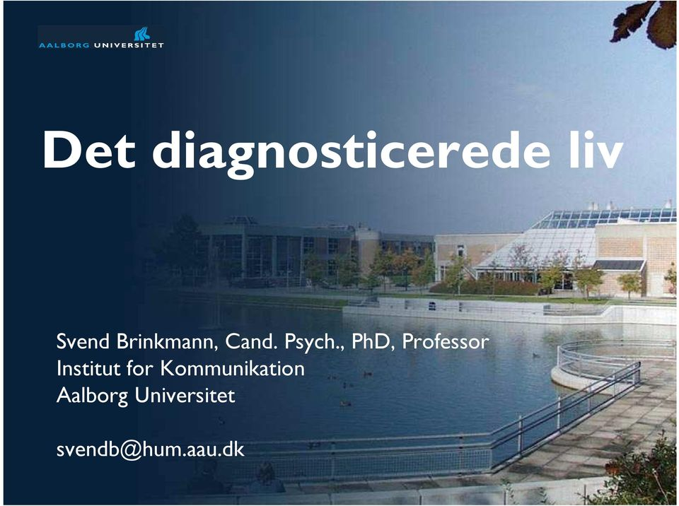 , PhD, Professor Institut for