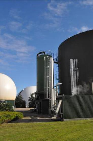 Perspectives biogas as buffer need