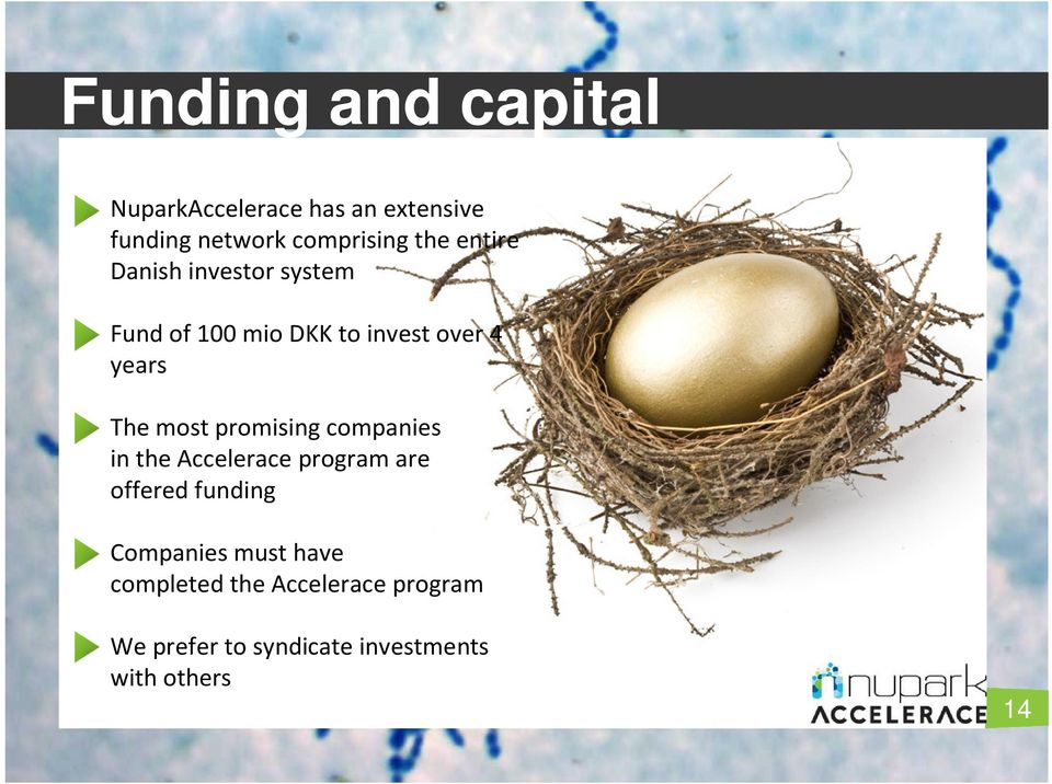 most promising companies in the Accelerace program are offered funding Companies