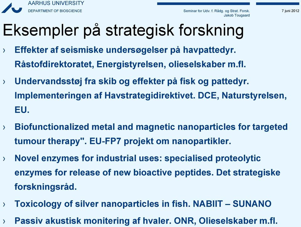 "Biofunctionalized metal and magnetic nanoparticles for targeted tumour therapy"". EU-FP7 projekt om nanopartikler."