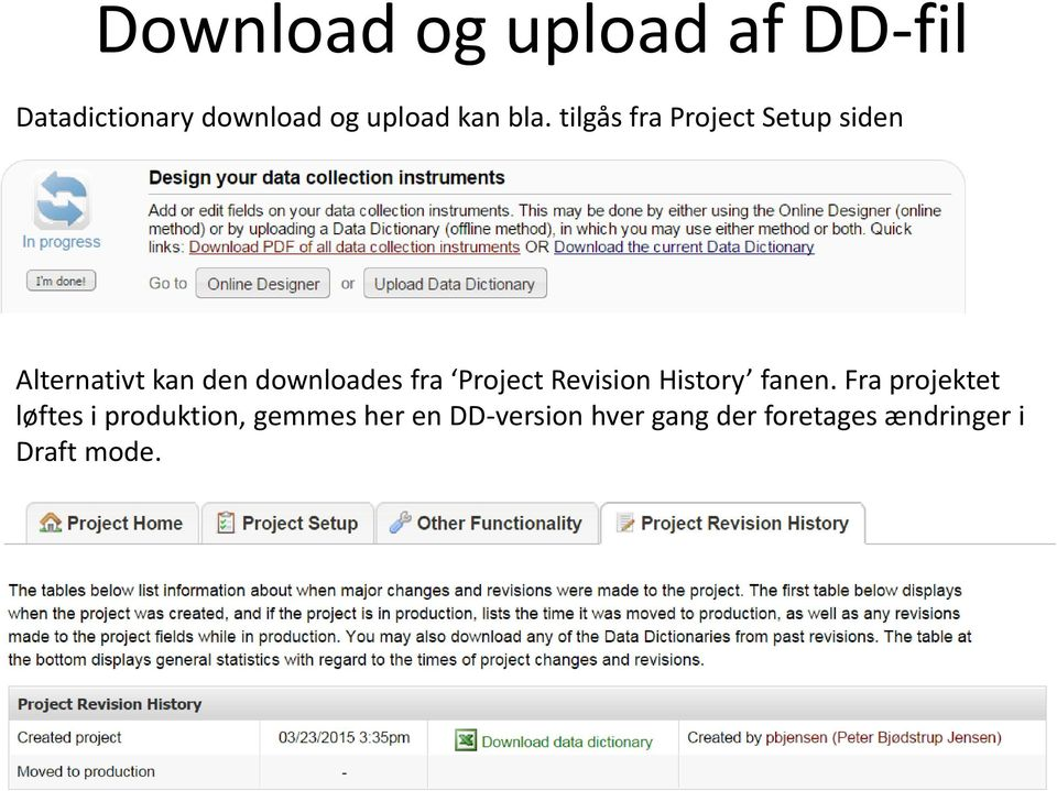 fra Project Revision History fanen.